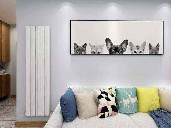 客厅暖气片如何布置装饰才美观